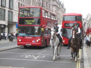 Bus chevaux